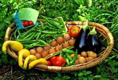 Global Growers CSA